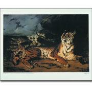 Trousse 4, Une faune à apprivoiser 5