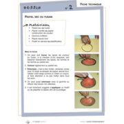 1er cycle Guide d'enseignement numérique 2 4